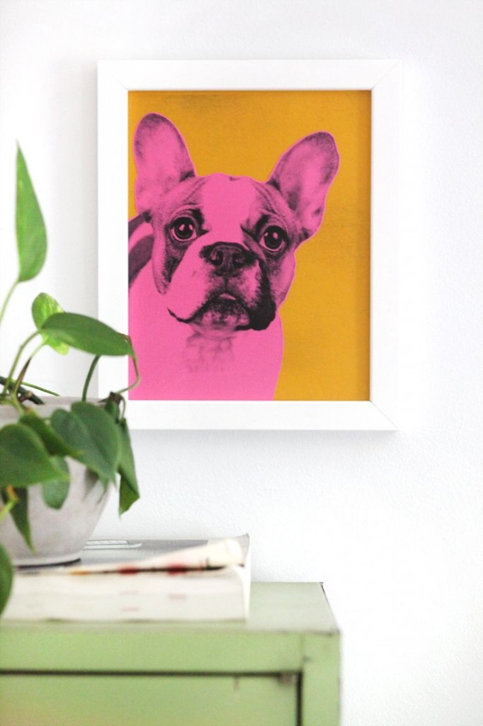 Pin Ups: DIY pet portraits| knittedbliss.com