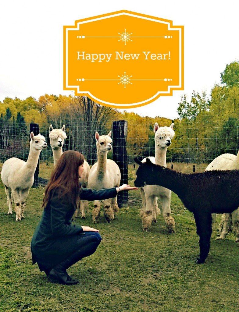Happy New Year| knittedbliss.com