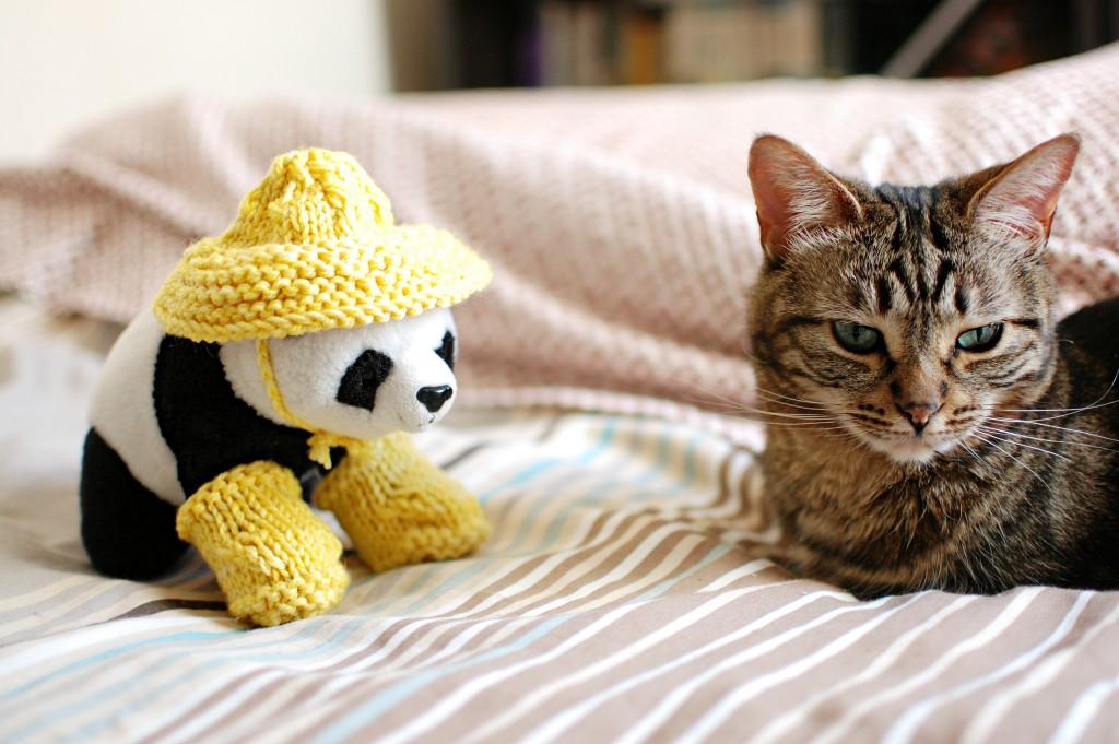 Knit in Progress: Mystery Toy Knitalong | knittedbliss.com