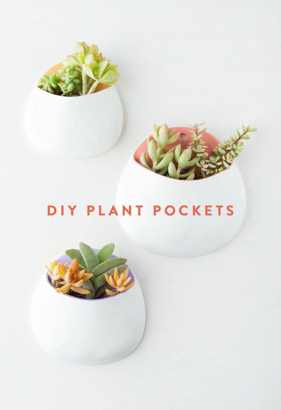 Pin Ups: DIY Clay Wall Planters | knittedbliss.com